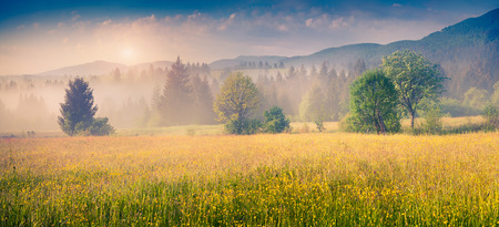 Colorful panorama of the summer morning in the foggy Carpathian mountains. Borzhava range, Transcarpathian, Ukraine, Europe.
