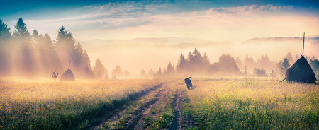 haymaking: Haymaking in a Carpathian village. Colorful scene in the foggy mountain. Summer panorama with old country road. Stock Photo