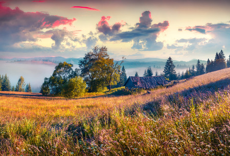 Colorful morning scene in the mountains with rolling hills and valleys in golden morning light. Foggy sunrise in Carpathians, Kvasy village location, Ukraine, Europe. instagram toning. Stock Photo