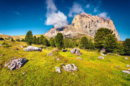 sella: Colorful summer morning on the Sassolungo (Langkofel) mountain range. View from the Sella pass. National Park Dolomites, South Tyrol. Ortisei location, Italy, Europe.