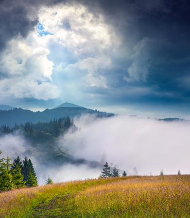 sun drop: Dramatic summer scene in the foggy mountains. Sun drop a light on the top of mountain Homyak, Carpathians, Ukraine, Europe.