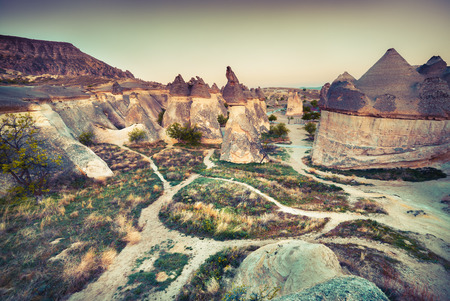 fungous: Fungous forms of sandstone in the canyon near Cavusin village, Cappadocia, Nevsehir Province in the Central Anatolia Region of Turkey, Asia. Artistic style post processed photo. Retro style filtered. Stock Photo