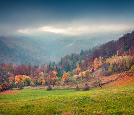 Colorful autumn landscape in the Carpathian mountains. Splendid outdoor scene near the Roztoky village, Ukraine, Europe. Artistic style post processed photo.