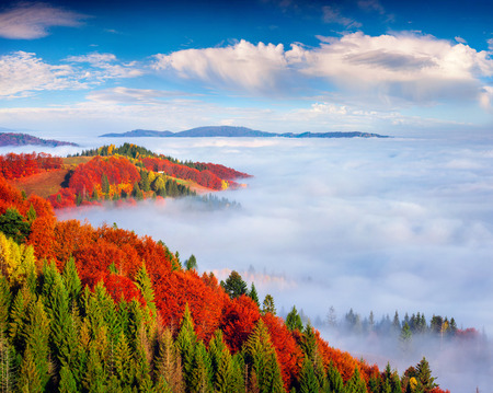 Foggy autumn landscape in Carpathian mountains. Sunny morning on Sokilsky ridge, Ukraine, Europe. Artistic style post processed photo. Stock Photo