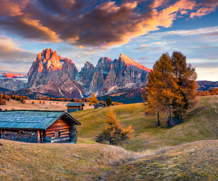 Incredible sunset in Alpe di Siusi with beautiful yellow larch trees and Langkofel (Sassolungo) mountain on background. Colorful autumn evening in Dolomite Alps, Ortisei locattion, Italy, Europe.