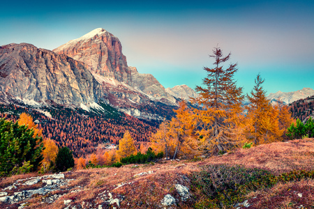 Fantastic view from top of Falzarego pass with Lagazuoi mountain. Colorful autumn morning in Dolomite Alps, Cortina dAmpezzo lacattion, Italy, Europe. Stock Photo