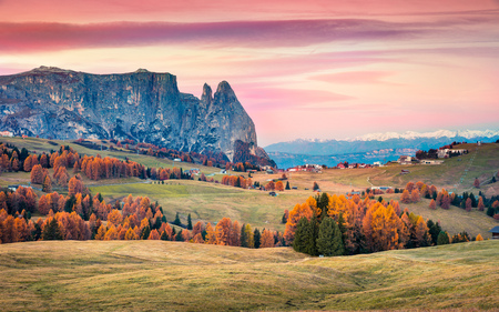 Incredible sunrise in Alpe di Siusi with beautiful yellow larch trees and Schlern (Sciliar) mountain on background. Colorful autumn morning in Dolomite Alps, Ortisei locattion, Italy, Europe.