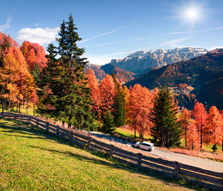 Traveling in Dolomite Alps by the car. Colorful autumn scene in mountains with yellow pine trees. Cortina dAmpezzo location, Italy, Europe.
