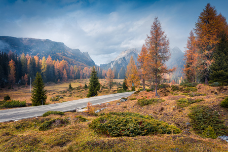 Foggy morning scene in National Park Tre Cime di Lavaredo. Colorful autumn landscape in Dolomite Alps, South Tyrol, Location Auronzo, Italy, Europe.