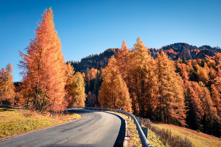 Fantastic sunny view of Dolomite Alps with yellow larch trees. Colorful autumn scene in mountains. Giau pass location, Italy, Europe. Artistic style post processed photo. Stock Photo