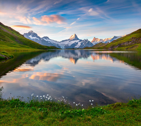 Wetterhorn and Wellhorn peaks reflected in water surface of Bachsee lake. Colorful summer sunrise in Bernese Oberland Alps, Grindelwald location, Innertkirchen, Switzerland, Europe.