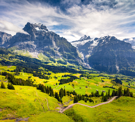 Colorful morning view of Grindelwald village. Wetterhorn and Wellhorn mountains, located west of Innertkirchen in the Bernese Oberland Alps. Switzerland, Europe.