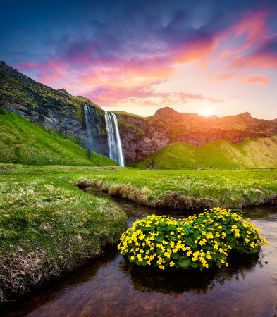 Morning view of Seljalandfoss Waterfall on Seljalandsa river in summer. Colorful sunrise in Iceland, Europe. Artistic style post processed photo. Imagens