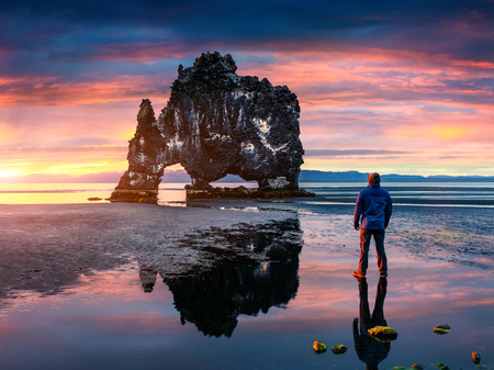Man stands on the surface of water at fall of tide and and admiring of sunrise. Huge basalt stack Hvtserkur on the eastern shore of the Vatnsnes peninsula, Iceland, Europe.