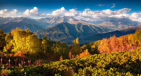 Kleurrijke herfstochtend in de bergen van de Kaukasus. Zonnige mening van berg Ushba van Mher mountainsides in Hogere Svaneti, Georgië, Europa. Artistieke stijl na verwerkte foto.