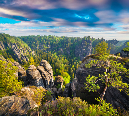 Misty morning on sandstone cliff in Saxony Switzerland. Colorful spring scene in Germany, Saxony, Europe. Artistic style post processed photo. Stock Photo
