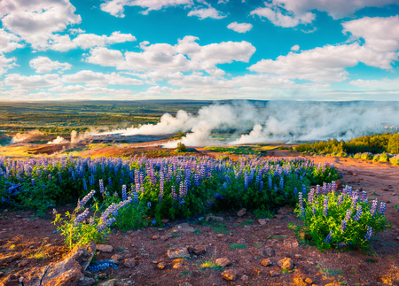 Erupting of the Great Geysir lies in Haukadalur valley on the slopes of Laugarfjall hill. Foggy summer morning in Southwestern Iceland