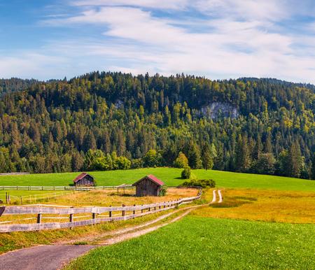 Sunny view of green meadows near the Kaltenbrunn village. Coloful outdoor scene in Bavaria, Germany Reklamní fotografie