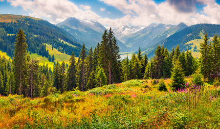 Colorful summer morning on the valley near Speicher Durlassboden lake. View of Richterspitze mountain range in the Austrian Alps, Schwaz district in the Tyrol state, Austria
