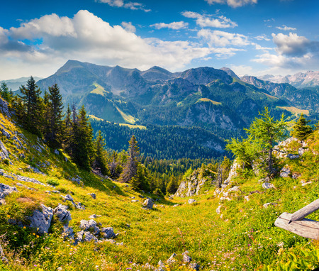 View from top of cableway above the Konigsee lake on Schneibstein mountain ridge. Colorful summer morning on a border of Germany and Austrian Alps. Berchtesgaden location, Bavaria, Germany