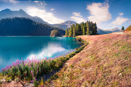 Sunny summer morning on Silvaplana lake. Great outdoor scene in Swiss Alps, Sondrio province Lombardy region, Italy