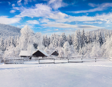 Picturesque winter landscape in the Carpathian village. Sunny outdoor scene in the garden after heavy snowfall, Happy New Year celebration concept. Artistic style post processed photo. Stock Photo - 88599515