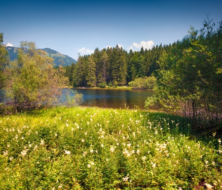 Bright sunny morning on the blossom valley near Gessl village. Colorful summer view of the Grundlsee lake, Liezen District of Styria, Austria, Alps. Europe. Artistic style post processed photo.