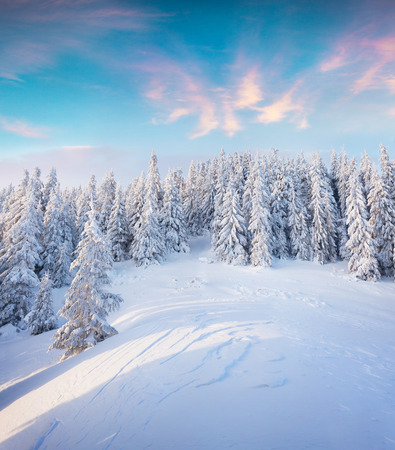 Beautiful winter sunrise in Carpathian mountains. Colorful outdoor scene, Happy New Year celebration concept. Artistic style post processed photo.