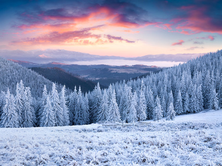 Unbelievable Winter Sunset In Carpathian Mountains With Snow Stock Jpg 450x338 Mountain Wallpaper Share Picturesque