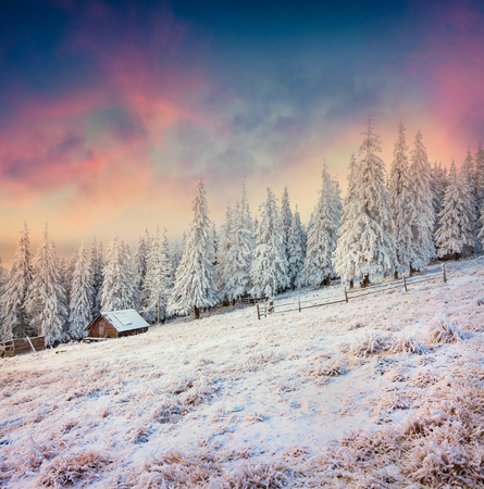 Foresters hut in the snowy mountain forest. Colorful winter sunrise in Carpathians, Happy New Year celebration concept. Artistic style post processed photo.