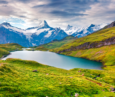 Dramatic summer view of the Bachalpsee lake with Schreckhorn and Wetterhorn peacks on the background. Green morning scene in the Swiss Bernese Alps, Switzerland, Europe.
