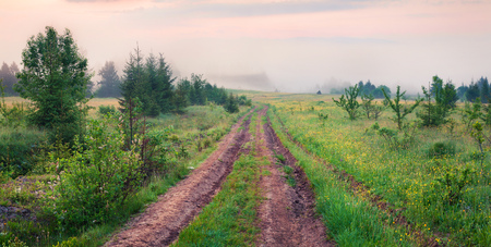 Foggy morning view of the mountains valley with old country road. Misty summer sunrise in the Carpathian mountains, Ukraine, Europe. Beauty of nature concept background.