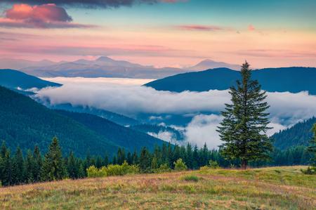 カルパティア山脈のカラフルな夏の日の出。6月、ウクライナ、Tatariv 村の場所、ヨーロッパの山の谷の絵のような朝の景色。芸術的なスタイルポス