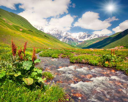 Colorful summer view on the pure water river in Caucasus mountains. Sunny morning scene on the foot of Shkhara mountain, Ushguli village location, Upper Svaneti, Georgia, Europe. Stock Photo