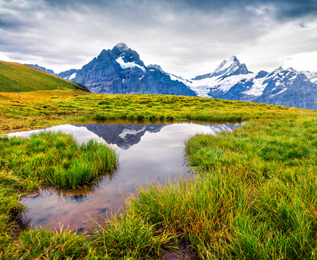 Dramatic summer view with a Mt. Schreckhorn and Wetterhorn on the background. Green morning scene in the Swiss Bernese Alps, Switzerland, Europe. Beauty of nature concept background.  Stock Photo