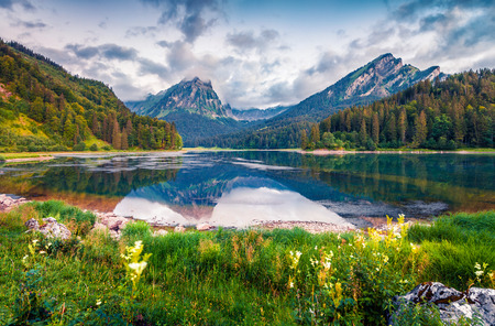 Misty summer landscape on the Obersee lake. Colorful morning view in the Swiss Alps, Nafels village location, Switzerland, Europe. Artistic style post processed photo.