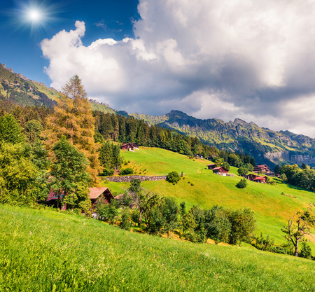 Colorful summer view of Wengen village. Beautiful outdoor scene in Swiss Alps, Bernese Oberland in the canton of Bern, Switzerland, Europe. Artistic style post processed photo. Stock Photo - 89424450