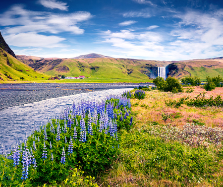 Great summer view of Skogafoss Waterfall on Skoga river. Colorful summer scene in Iceland, Europe. Artistic style post processed photo.