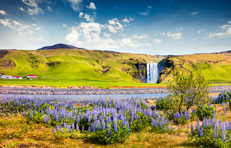 Picturesque summer view of Skogafoss Waterfall on Skoga river. Colorful summer scene in Iceland, Europe. Artistic style post processed photo.
