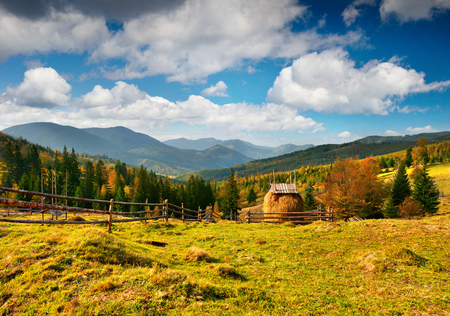 Sunny autumn view of the Carpathian mountains. Amazing morning scene in the mountain valley, Maksymets village location, Ukraine, Europe. Beauty of countryside concept background.
