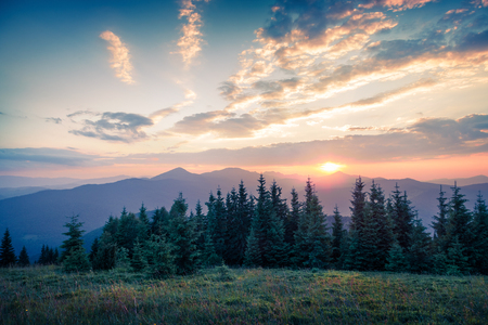 Beautiful summer sunset in the mountains. Last sunlight glowing a hills and valleys in Carpathians, Ukraine, Europe. Artistic style post processed photo.