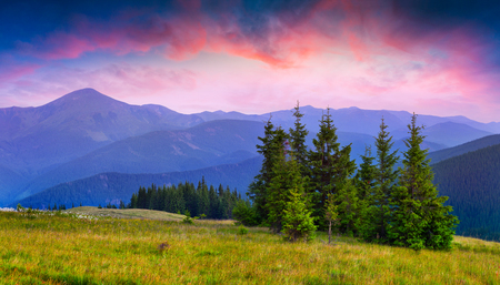Colorful summer sunrise in the Carpathians. Dramatic morning scene in the mountain meadow. Beauty of nature concept background. Artistic style post processed photo.