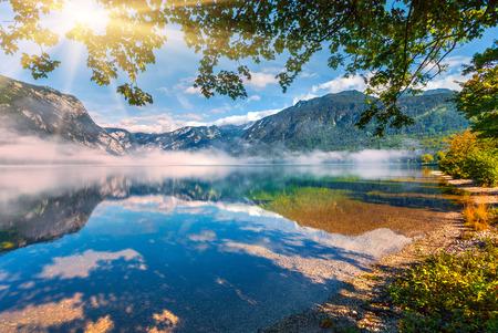 Foggy summer landscape on the Bohinj lake. Sunny morvivg scene in Triglav national park, Slovenia, Julian Alps, Europe. Beauty of nature concept background. 版權商用圖片