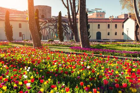 Gulhane (Rosehouse) 공원, 이스탄불에서에서 놀라운 튤립. 터키, 유럽의 아름다운 야외 풍경. 도시 공원에서 석양입니다. 자연 컨셉 배경의 아름다움입니다.