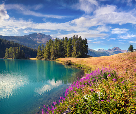 Colorful summer landscape on the Champferersee lake. Amazing morning view in the Swiss Alps? Silvaplana village location, Switzerland, Europe. Beauty of nature concept background.