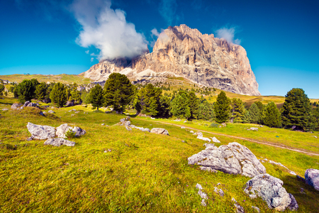 Splendid summer morning on the Sassolungo (Langkofel) mountain range. View from the Sella pass. National Park Dolomites, South Tyrol. Ortisei location, Italy, Europe. Beauty of nature concept background.  Stock Photo
