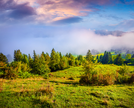 Foggy summer sunrise in the Triglav national park. Great morning scene in Julian Alps, , Slovenia, Europe. Artistic style post processed photo. Beauty of nature concept background.