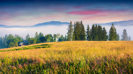 Foggy summer panortama of the Carpathian mountain village. Splendid morning view of misty mountain valley.  Beauty of countryside concept background.
