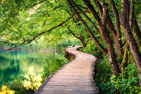 Pittoreske ochtend in Nationaal Park Plitvice. Kleurrijke de lentescène van groen bos met zuiver watermeer. Geweldig uitzicht op het platteland van Kroatië, Europa. Schoonheid van aard concept achtergrond.