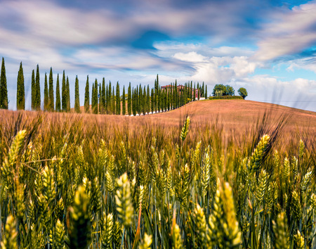 Classic Tuscan view with farmhouse and cypress trees. Colorful summer view of Italian countryside, Val dOrcia valley, San Quirico dOrcia location. Beauty of countryside concept background. Stock Photo
